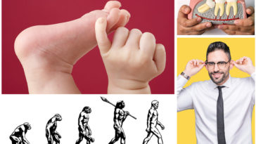 10 Signs Of Evolution You Can Find On Your Body