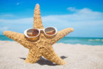 Fun & Interesting Facts About Starfish