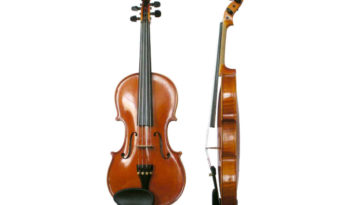 A violin actually contains 70 separate pieces of wood.