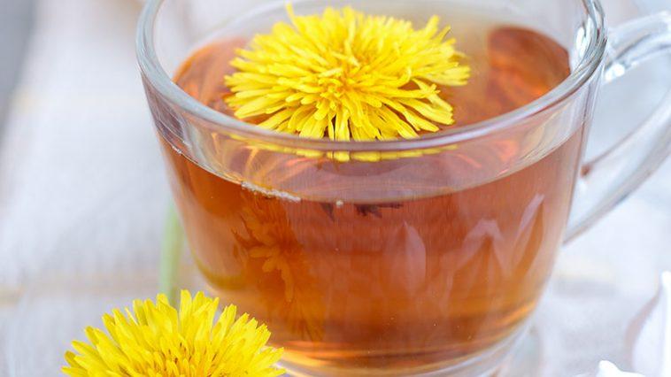 Dandelion Tea: 10 Problems That Solve Better Than Medicines