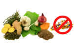 11 All-Natural Antibiotics Provided By Mother Nature