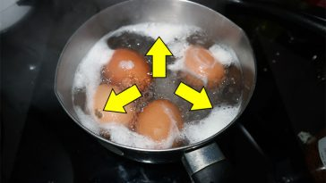 The biggest ERRORS that everyone makes when it comes to cooking eggs