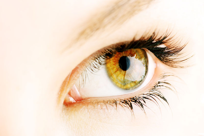 Hazel eyes are sensitive to sunlight