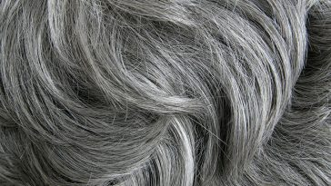 How To Reverse Gray Hair, New Study Finds