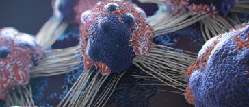 Why Is This Hidden From The Public: 10 Biggest Causes Of Cancer That We Use Every Day!