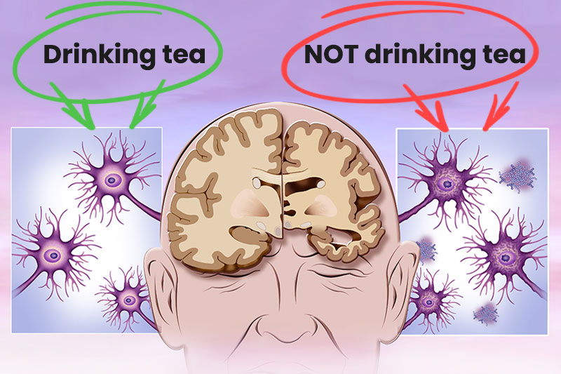 12 Things That Happens To Your Body When You Drink Tea Every Day