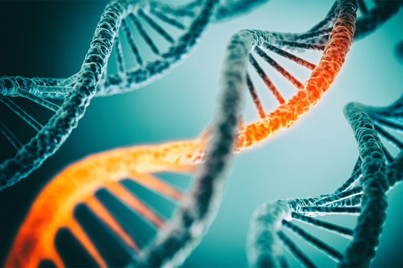 Our DNA consists of about 5-8% of viral DNA.