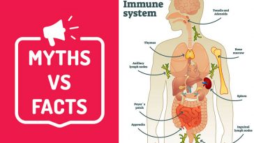 11 Myths About Your Immune System You Need to Stop Believing