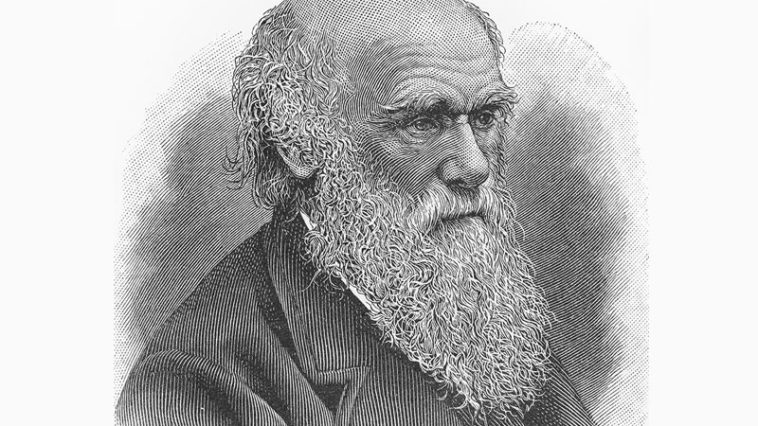10 Unknown Facts About Charles Darwin And His Life