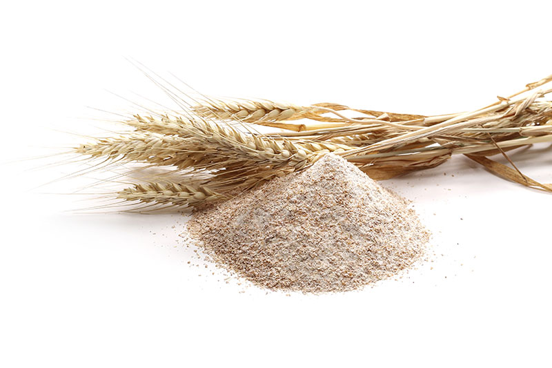 Make whole wheat dinner rolls
